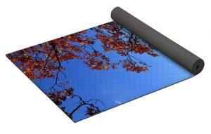 Yoga Mat Roll 2